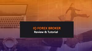 iq option tutorial italiano iq forex broker review and forex trading tutorial by pegima