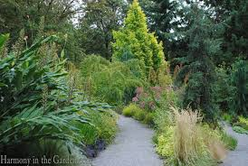 Botanical Garden Bellevue Bellevue Botanical Garden Harmony In The Garden
