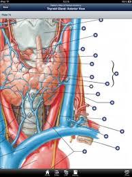 Netter Atlas Of Human Anatomy Online Skyscape U0027s Version Of Netter U0027s Atlas Of Anatomy Is An Average