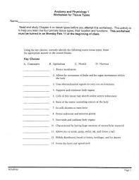 tissue types anatomy and physiology 1 worksheet for tissue types