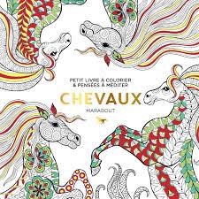 Le petit livre du coloriage  Chevaux Amazonfr Collectif Livres