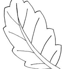 coloring pages of leaf shapes coloring pages leaf shapes kids drawing and coloring pages marisa