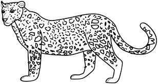 imagenes de animales carnivoros para imprimir animales para pintar online y divertirse en grande imagenes de