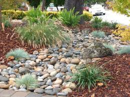 with modern low maintenance landscape best front yard landscaping