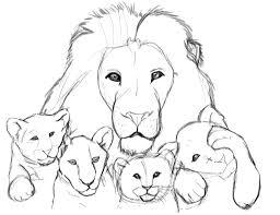 lion sketch drawcolorful deviantart
