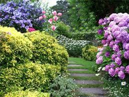 immagini di giardini fioriti giardini fioriti