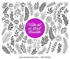 Wedding Flowers Drawing Hand Drawn Flowers Vector Wedding Invitation Download Free