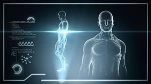 Male Anatomy Video Anatomy Hd Video U0026 4k B Roll Istock