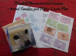 preschool homeschool curriculum animal families and babies lesson