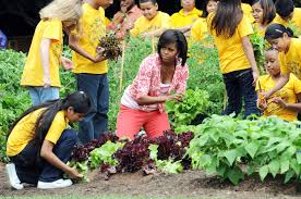 White House Tours Obama by A Look Back At Michelle Obama U0027s Vegetable Garden Over The Years