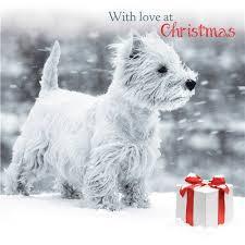 snowy westie cards west highland terrier card