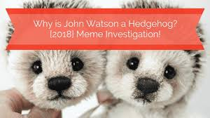 Hedgehog Meme - why is john watson martin freeman a hedgehog 2018 meme lookup