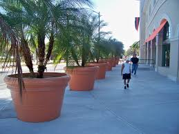 Extra Large Planters by Home Design Extra Large Planters For Trees Tree Exciting Wuoizz