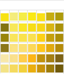 download pantone matching system color chart for free tidyform