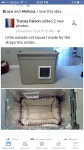 Homemade Cat Hammock by 20 Best Max Images On Pinterest Cats Cat Litter Box Diy And Cat