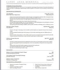 Resumes Examples For Jobs by Accounting Resume Service