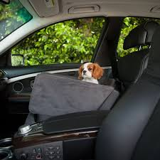 Rug Doctor On Car Seats Best 25 Car Seats For Dogs Ideas On Pinterest Pet Car Seat