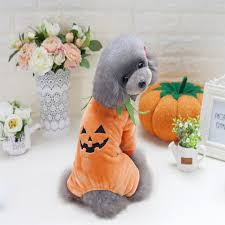 Squirrel Dog Halloween Costume Dog Costumes Pumpkin Promotion Shop Promotional Dog Costumes
