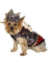 images of yorkies halloween costumes halloween ideas