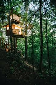 observatory treehouse red river gorge ky 225 325 g o