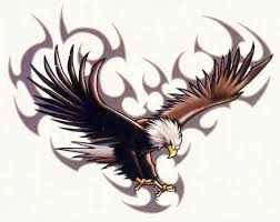 eagle meaning ideas images