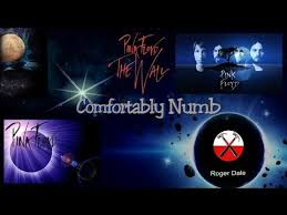 Comfortably Numb Roger Waters David Gilmour 305 Best Pink Floyd Fan Page Images On Pinterest Pink Floyd