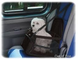 siege auto pliable siège auto doxtasy carbooster pour chien léger pratique et
