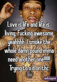 Fucking Awesome Meme - is life and life is living fucking awesome yeahhhh i smoke the