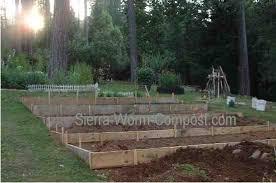a garden layout to maximize gardening success