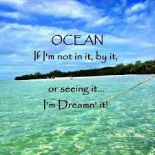 79 best ocean things images on pinterest ocean quotes words