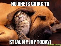 Joy Meme - no one is going to steal my joy today make a meme