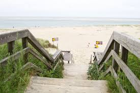 a beginner u0027s guide to cape cod a dash of lovely