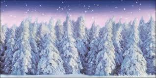 Forest Backdrop Winter Forest Backdrop 1d Backdrops Beautiful