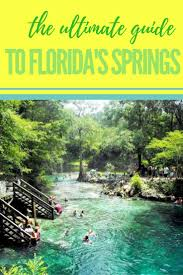 Map Of Springs In Florida Best 25 Florida Springs Ideas On Pinterest What Is Swimming