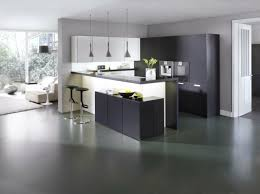 cuisine couleur wengé déco salon une cuisine sociale avec salon couleur wenge