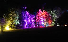 lights featured at griffis sculpture park news