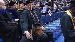 dog graduation cap and gown service dog accompanies veteran at a m college graduation woai