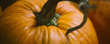 A Chef Slicing A Pumpkin by Fall Favorites Dennis Paper U0026 Food Service