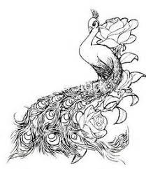watercolor peacock tattoo designs yahoo image search results