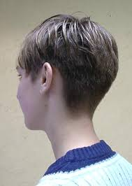 short hair with length at the nape of the neck hairxstatic short back cropped gallery 2 of 3