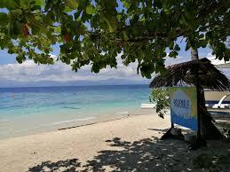 ravenala beach bungalows moalboal philippines booking com