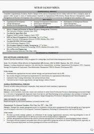 Account Executive Resume Example by Resume Example 74 Account Executive Resume Sample Insurance