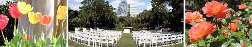 chair rentals san antonio evening weddings san antonio botanical garden