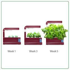 miracle gro aerogarden sprout red