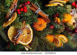 dried orange stock images royalty free images vectors