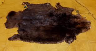Deer Hide Tanning Companies Furs Centralia Fur U0026 Hide