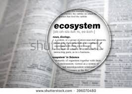 meaning word ecosystem stock photo 396070480