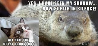 Groundhog Meme - groundhog meme 2014 verseo