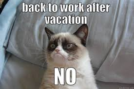 Back To Work Meme - back to work after vacation no grumpy cat pretty much how i feel