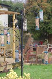 off the press super new feeding tree feeding garden